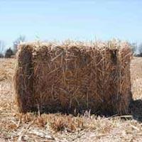 Agricultural Fibers