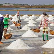 Sea Salt Manufacturers