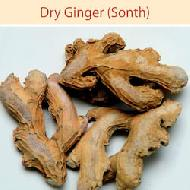 Dry Ginger Manufacturers