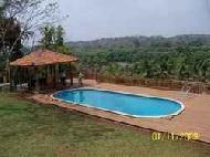 Shaped Swimming Pools