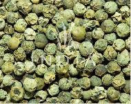 Green Pepper Manufacturers